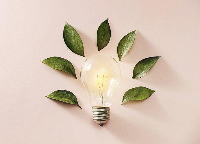 Eco_green_energy_concept_bulb,_lightbulb_leaves_on_pink_background.